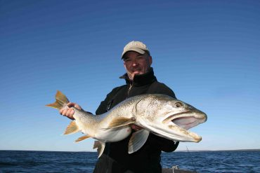 Two new world records in fishing