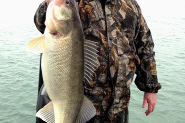The fastest route in the spring, to a trophy walleye like this one, is a bulked up jig.