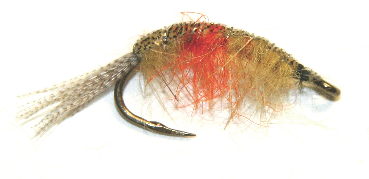Tips For Fly Fishing With Scuds Outdoor Canada Best Scud Fly Pattern