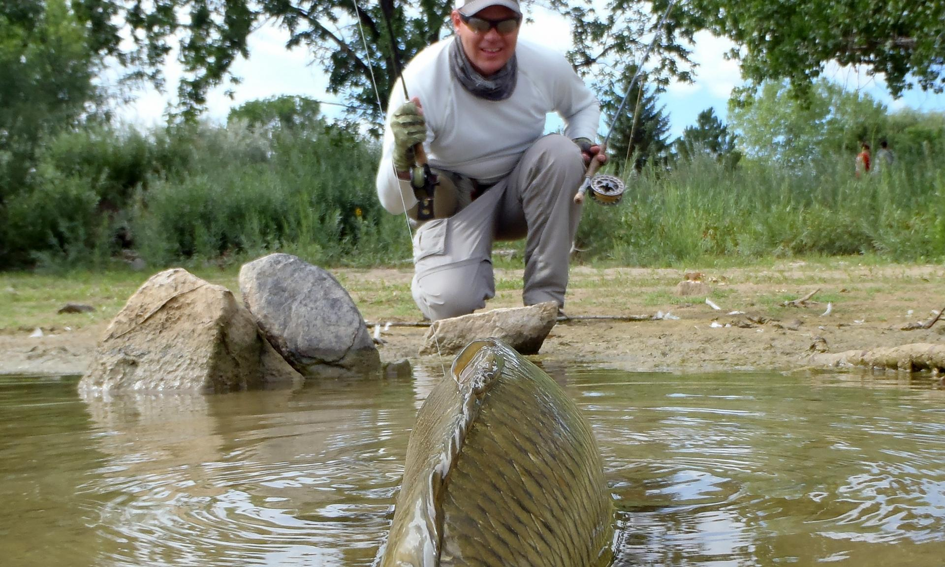 Expert secrets revealed: How to sight-fish for carp on the fly