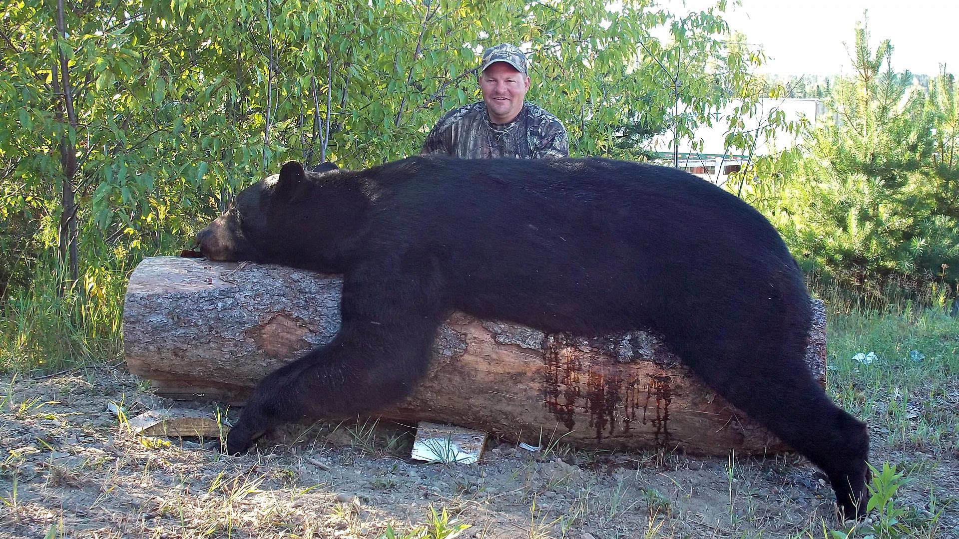 5 Essential Tips and Tactics for a Successful Spring Bear
