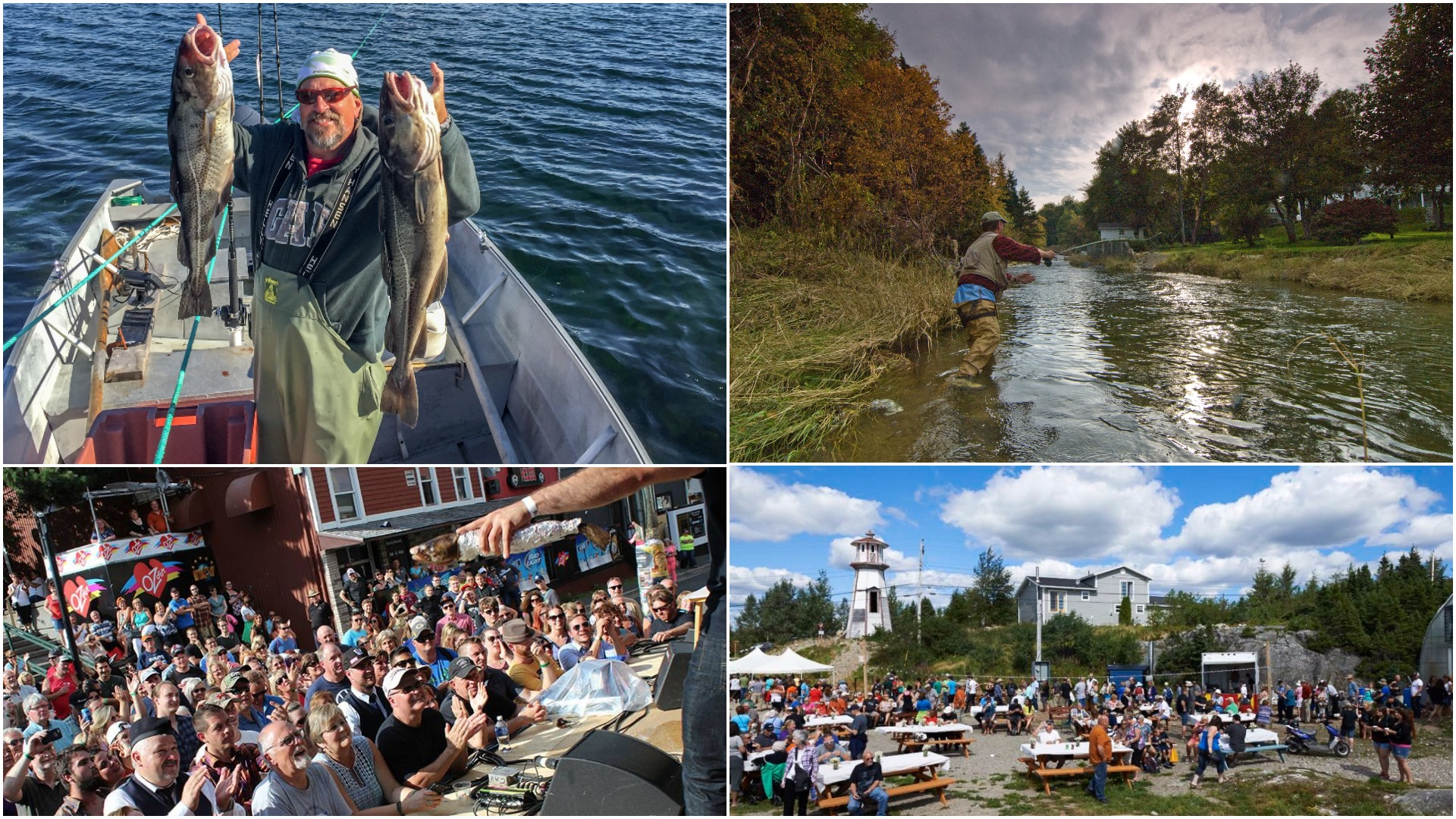 Visiting Newfoundland? You've gotta try these super-cool fishing adventures
