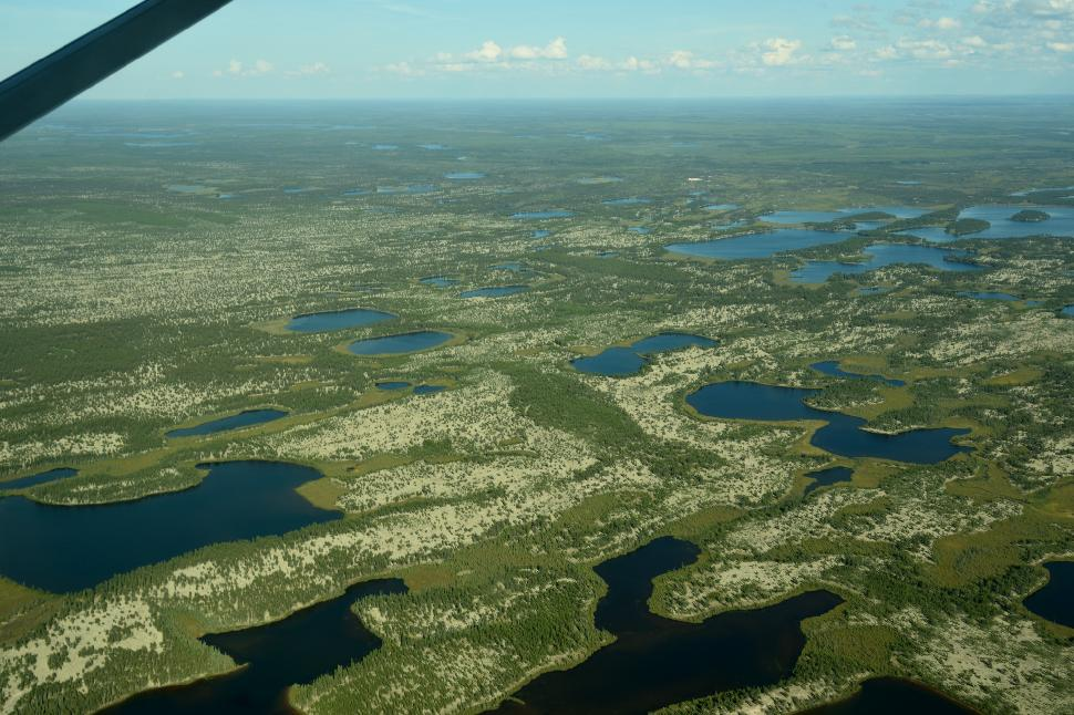 Aerial wildlife surveys are now being cancelled in Ontario due to a lack of funding