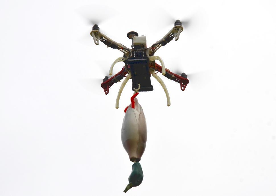 TD100 drone