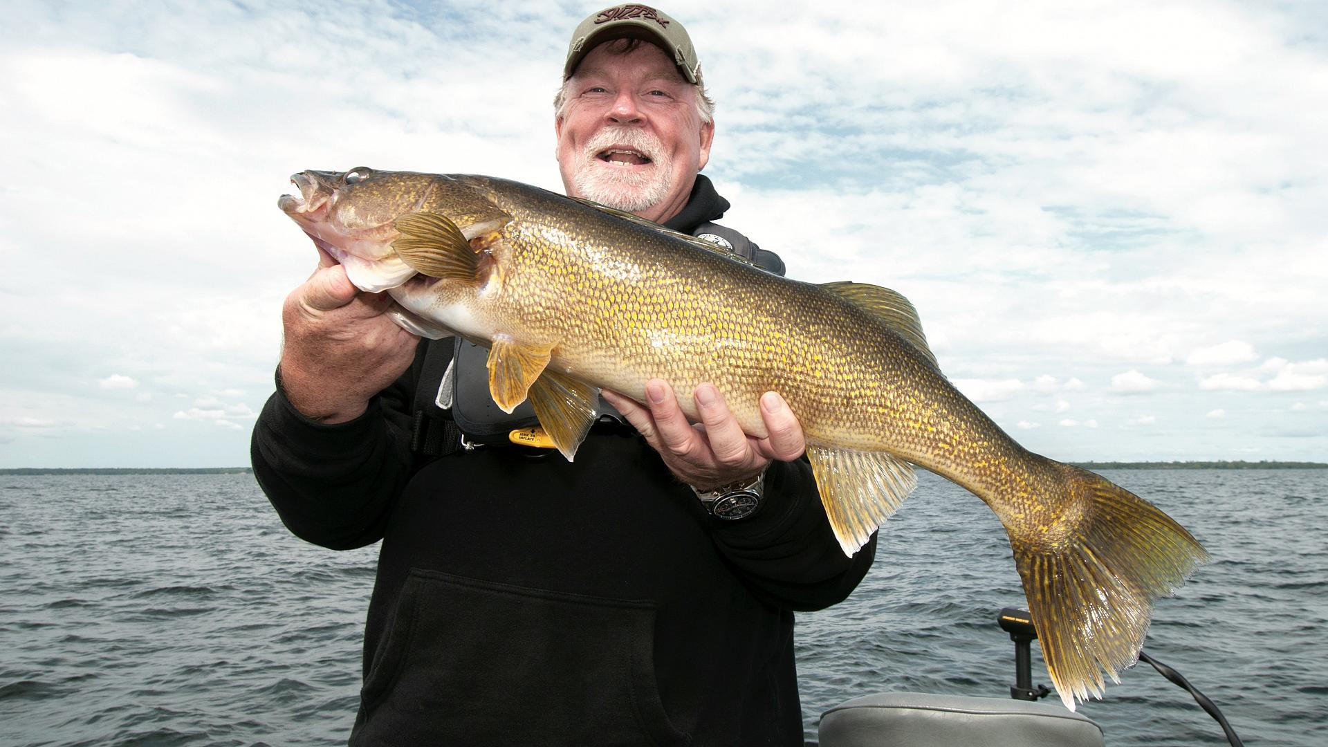 how to catch walleye fish