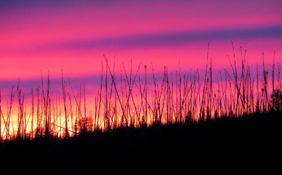 A colourful northern sunset. Credit: Adrian Skok.