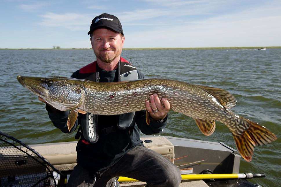 Credit: Fish'N Canada. Another pike for Bowman.