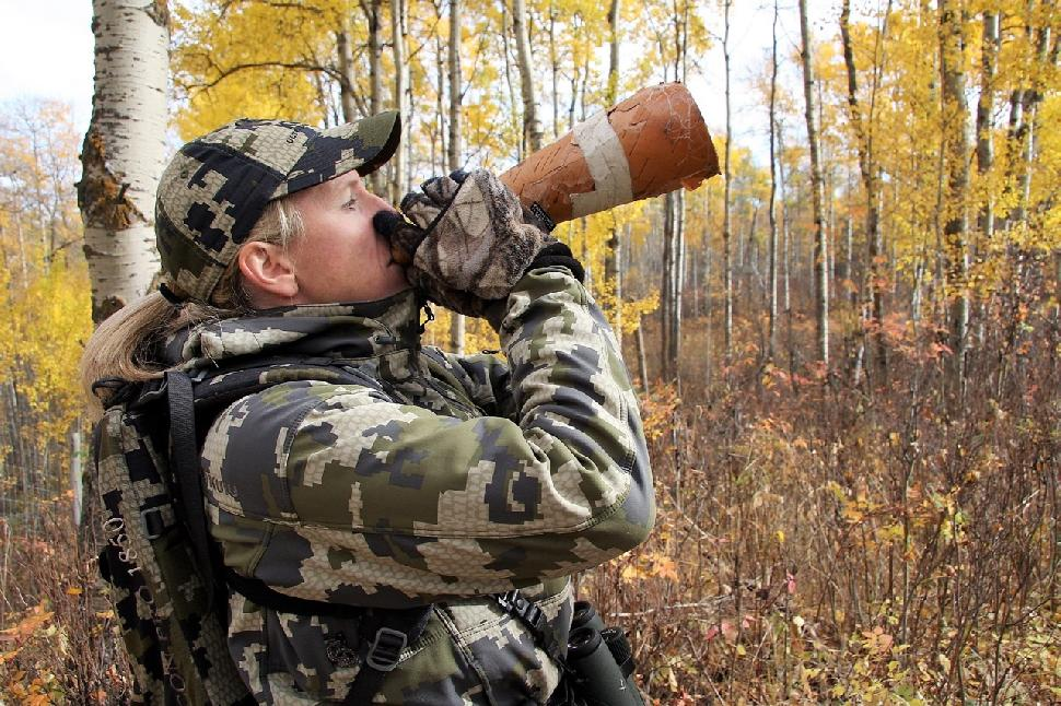 Hunter calling a moose
