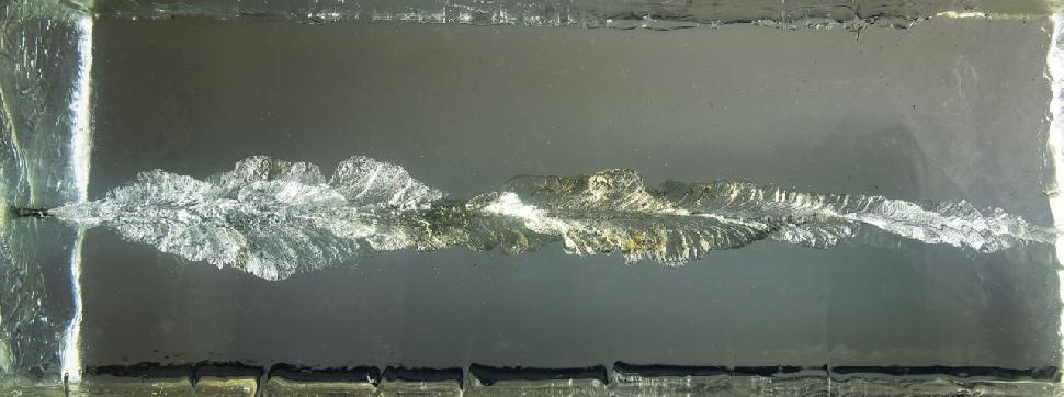 Monolithic bullets leave a deep wound channel, but don't disintegrate. Credit: Lowell Strauss.