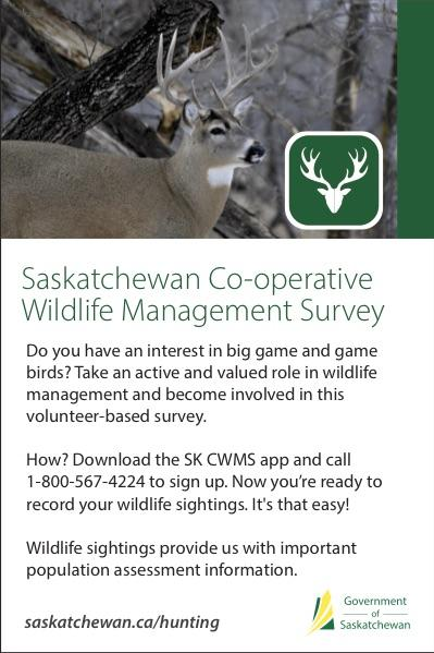 Saskatchewan now has an app for sharing wildlife sightings