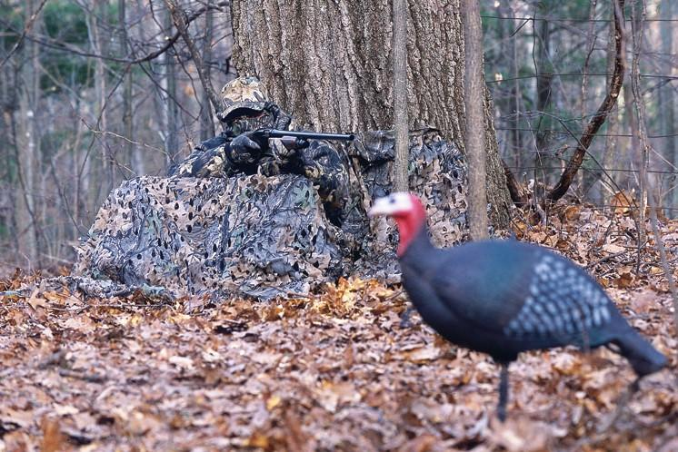 How to hunt quiet turkeys outdoor canada for Youtube trout fishing