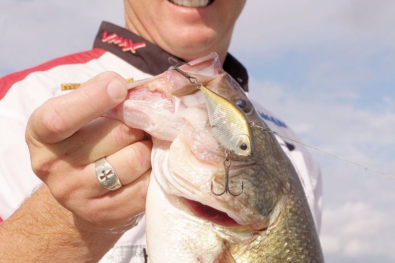 How to choose the right lure colour