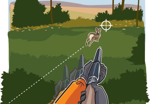 Rabbit-Aiming: Situation 3