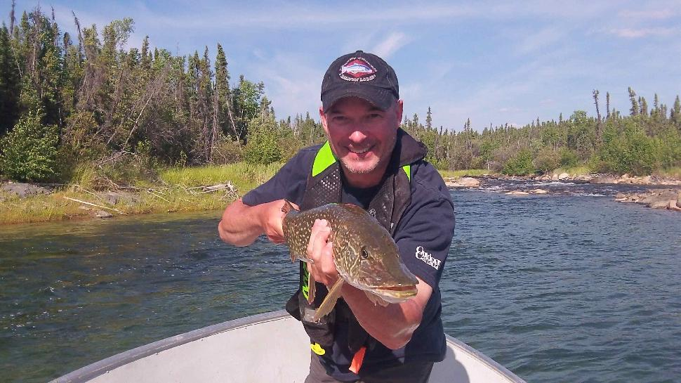 Pike aplenty: One of many northerns I brought to the boat today