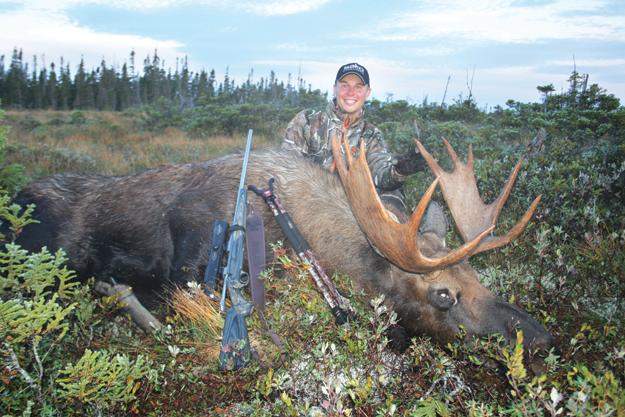 Moose kill
