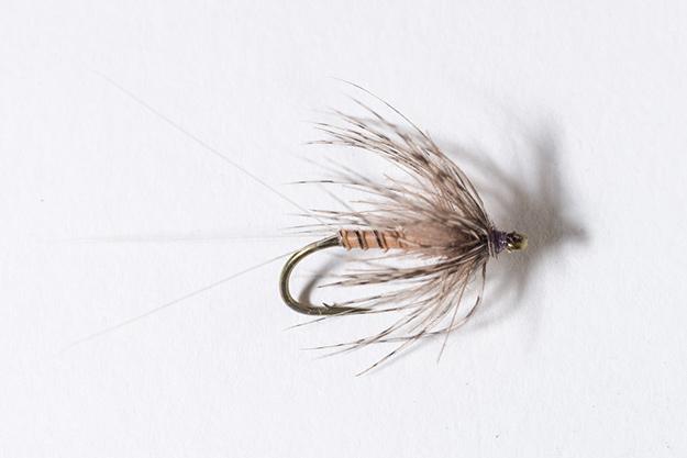 Hendrickson Soft-hackle Dry