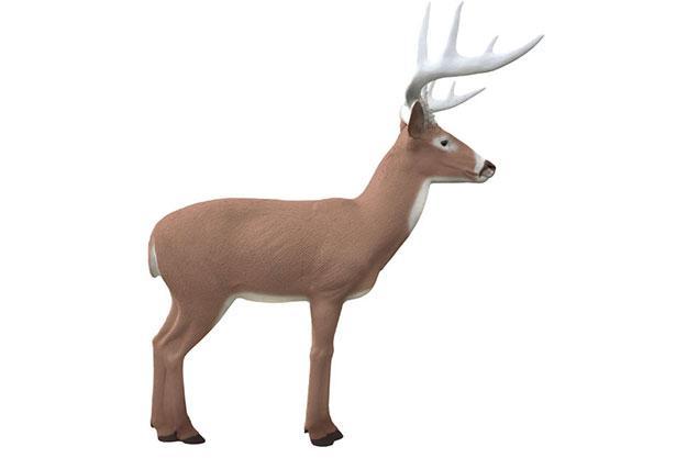 Booner Buck 3D Target