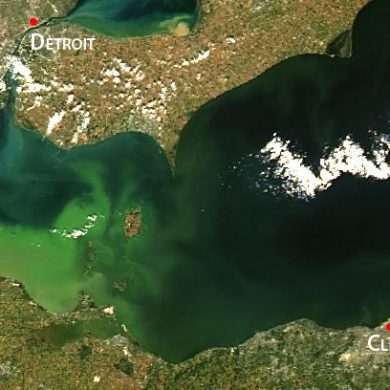 Satellite image of 2013 intense bloom, concentrated in Lake Erie's western basin.