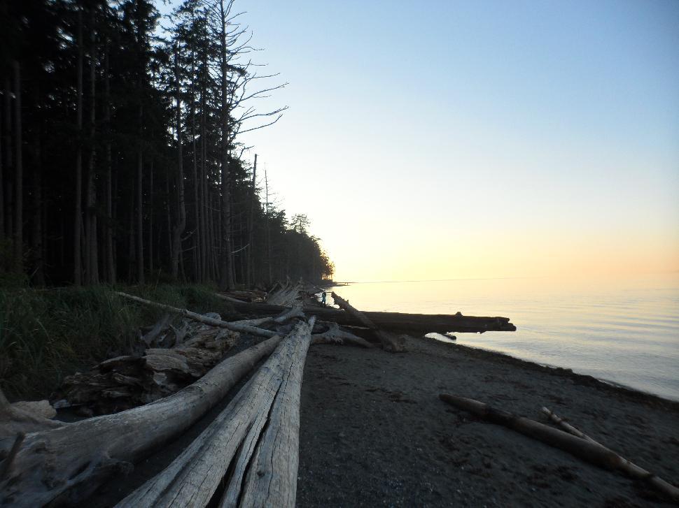Vancouver Island Beach