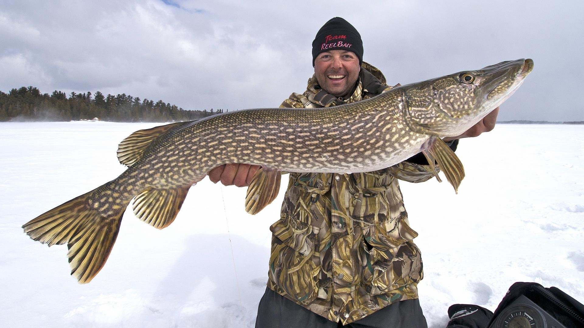 Why you've got to try jolting jigs for northern pike