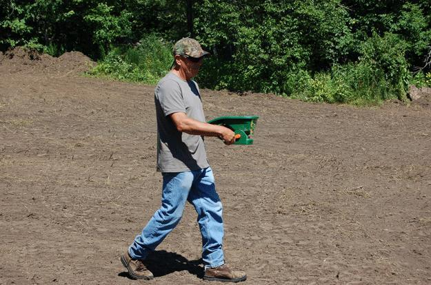 The author used a handheld seed spreader to scatter a blend of sugar beet, daikon radish, turnip and forage rape, planted at four pounds of seeds per acre. Credit: Rocky Crawford.