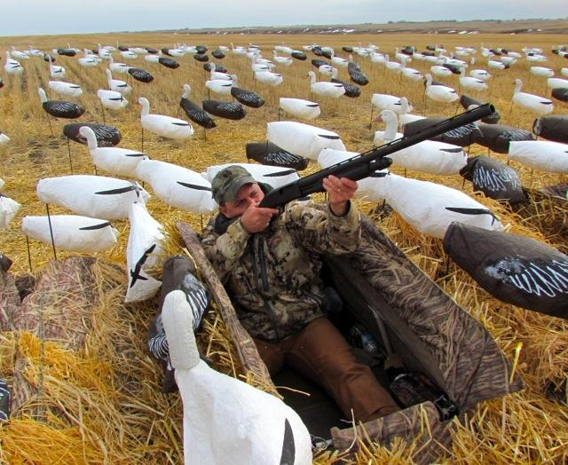 Credit: Wes David. For snow goose hunts, you need a 12-guage that will reliably cycle shell after shell without jamming.