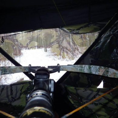 Cross Bow Through Blind