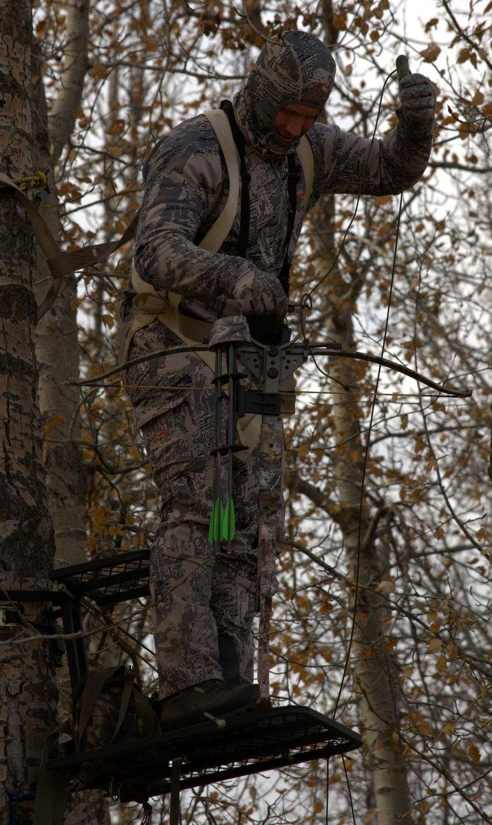 Tree Stand and Bow