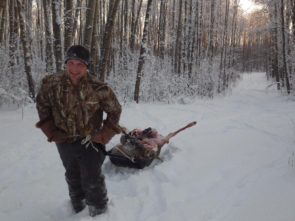Dragging deer