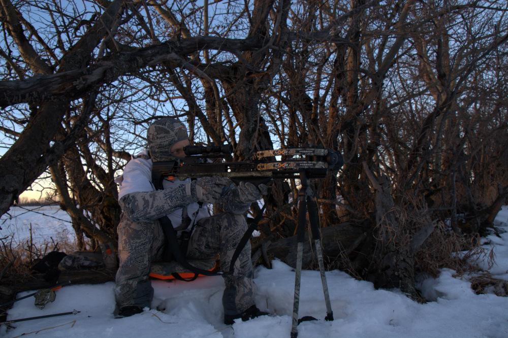 Hunter set up