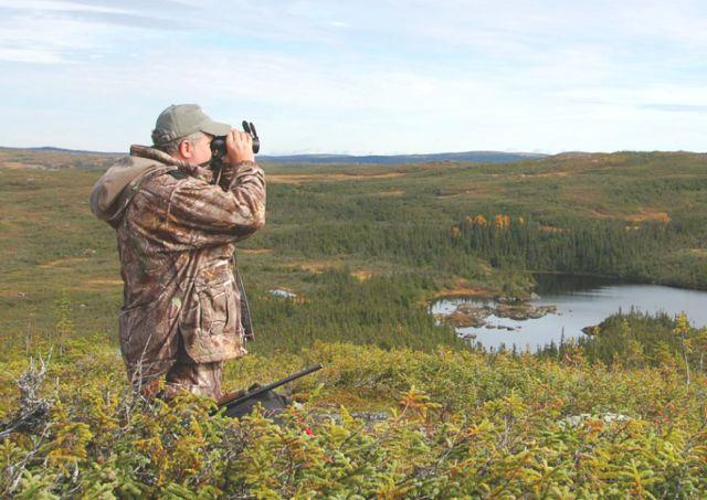 When glassing for bears, focus on south-facing slopes and edge habitat such as lakeshores.