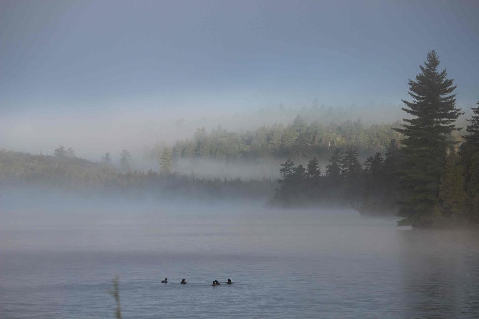 Jon Baker captured this awesome dawn scene