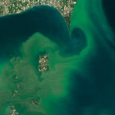Via Joshua Stevens/NASA Earth Observatory