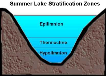Summer lake zones