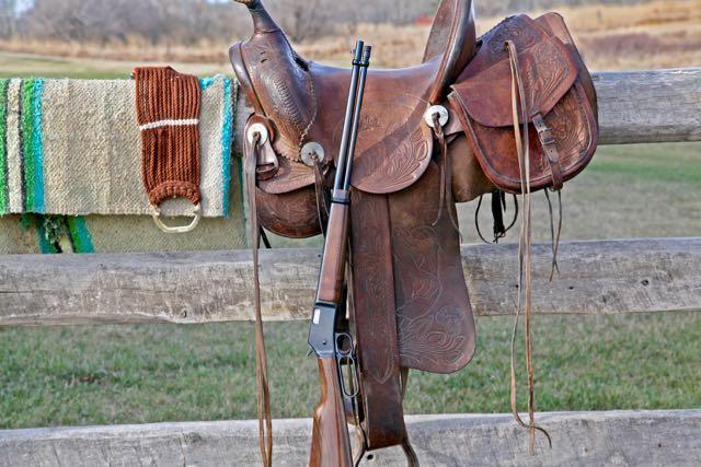 Rifle and saddle