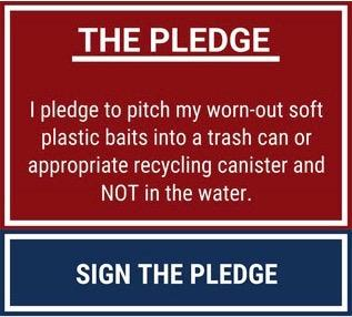 Sign the pledge