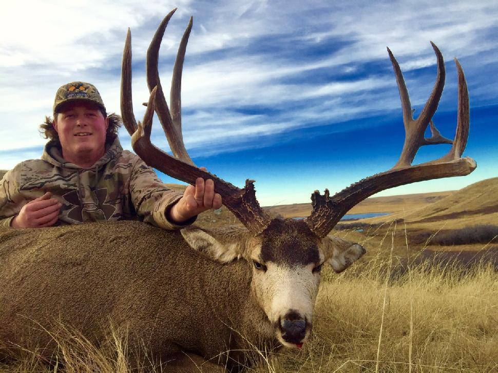 Credit: Spencer Vandenberg. Hunters can wait years for a coveted mule deer tag.