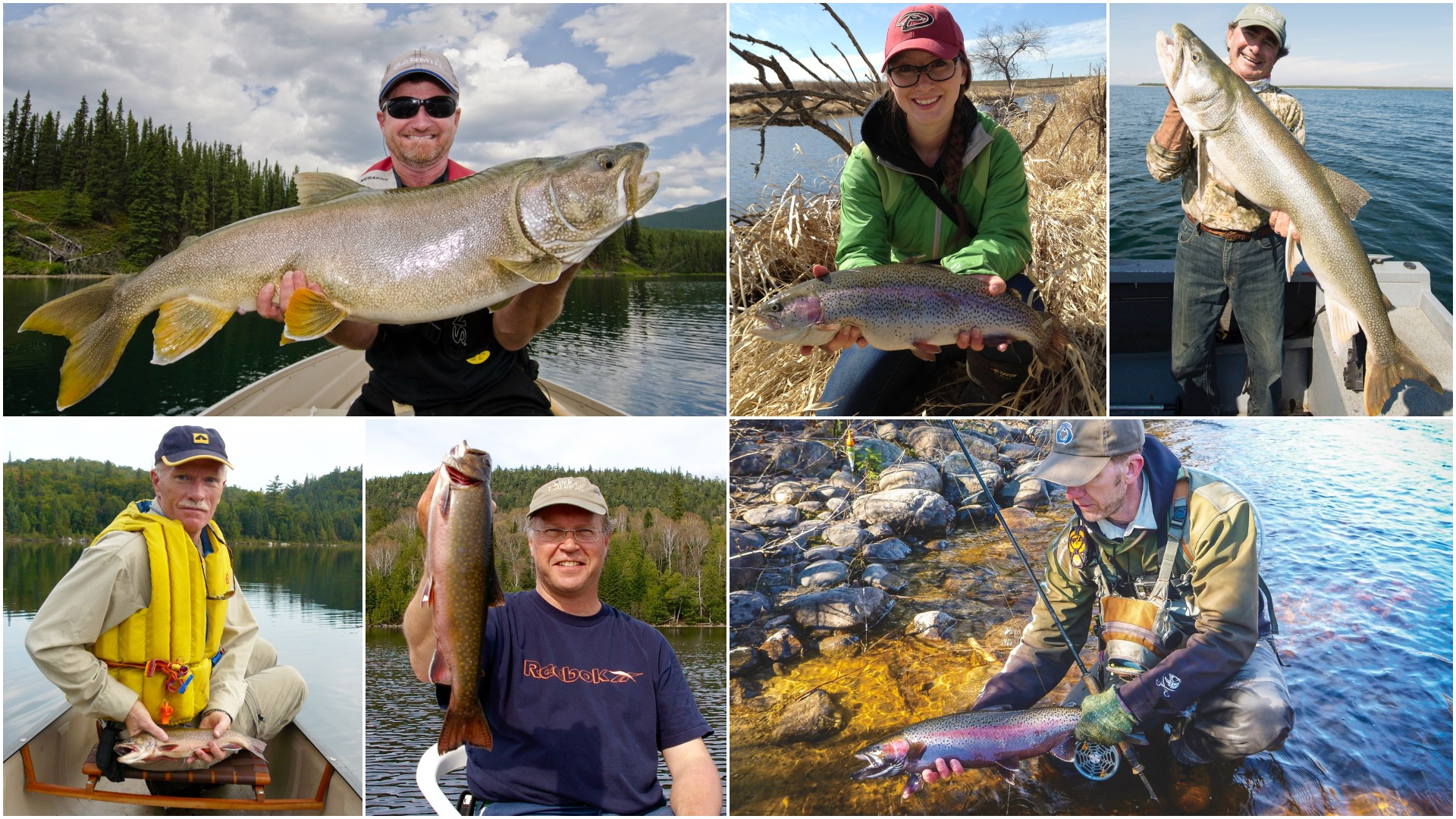 6 Canadian trout experts reveal their secret fishing techniques