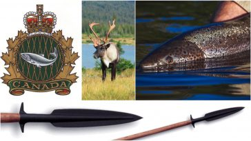 4 notable new numbers about fishing and hunting in Canada