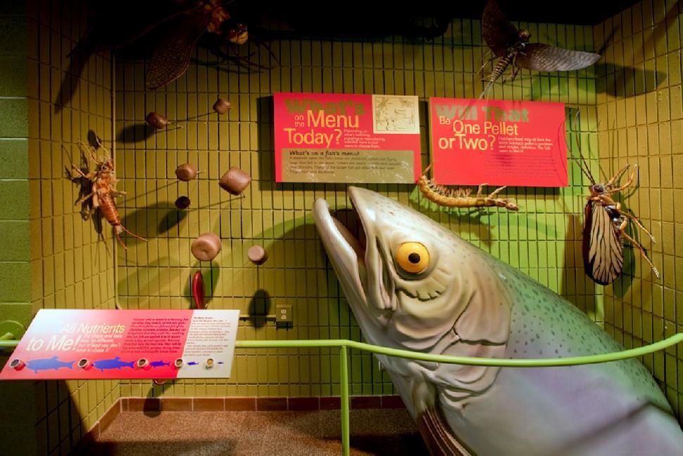 Credit: Bow Habitat Station Centre features creative exhibits